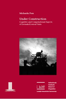 Picture of Under Construction: Cognitive and Computational Aspects of Extended Lexical Units