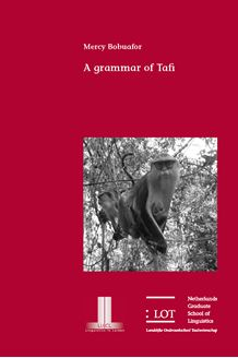 Picture of A grammar of Tafi