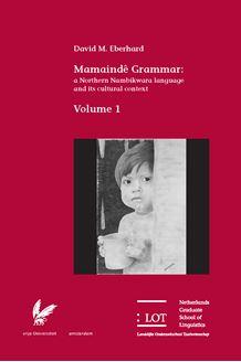 Picture of Mamaindê Grammar: a Northern Nambikwara language and its cultural context